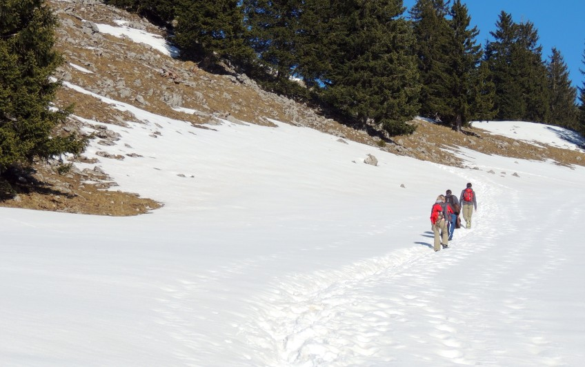 Fellowship on a hike